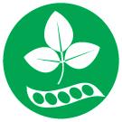 Alérgeno soja